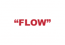 "What does ""Flow"" mean?"