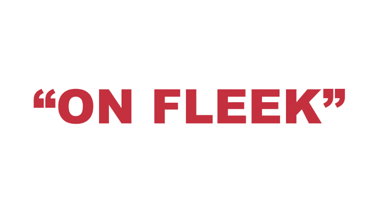 "What does ""On Fleek"" mean?"