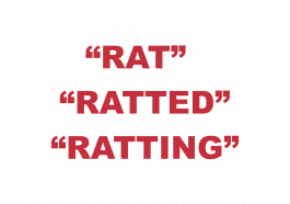 "What does ""Rat"", ""Ratting"" or ""Ratted"" mean?"