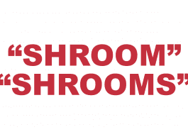 """What does """"Shroom"""" or """"Shrooms"""" mean?"""