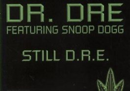 "Jay Z wrote Dr. Dre's ""Still D.R.E."" ft. Snoop Dogg, the lead single off Dr. Dre's ""2001"" album"