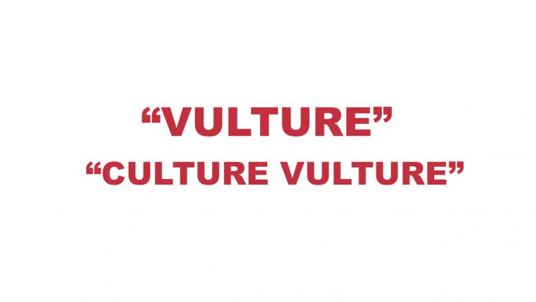 "What does ""Vulture"" and ""Culture Vulture"" mean?"